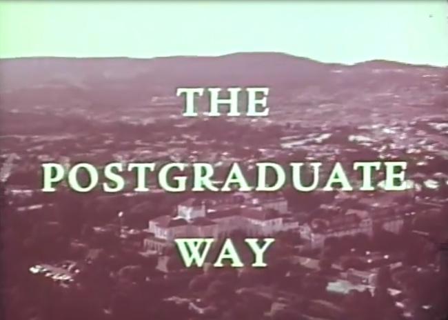 Why I quit postgraduate
